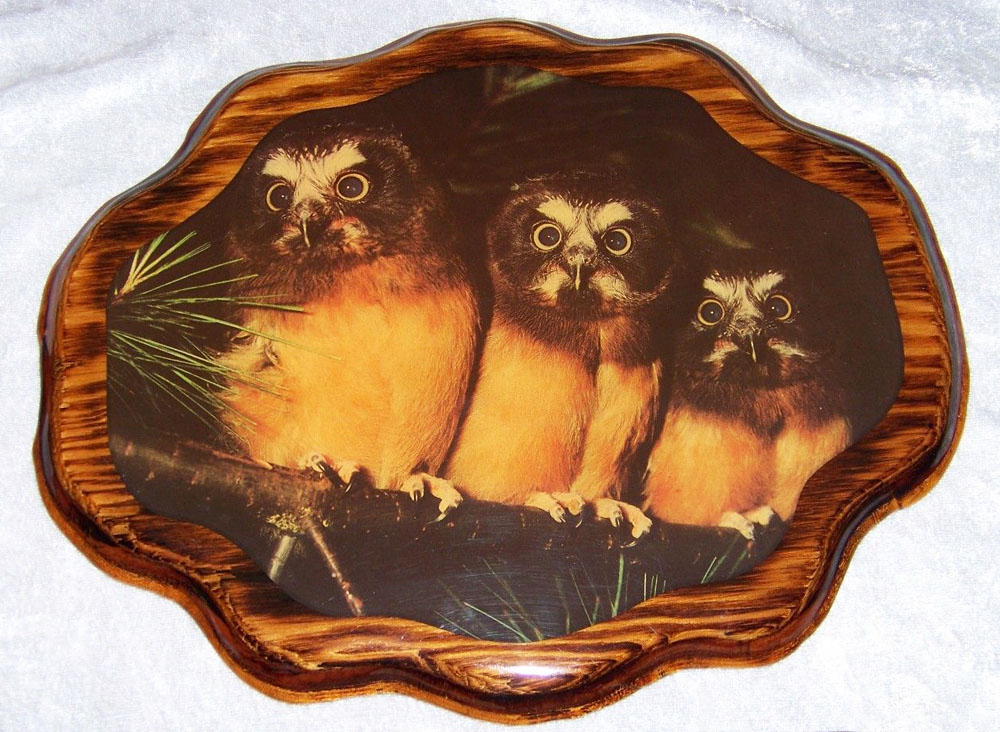 owl family wood decoupaged wall plaque